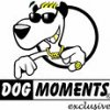 Dogmoments & friends