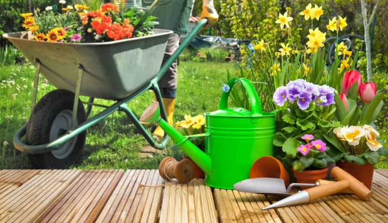 Garten und Gartenpflege