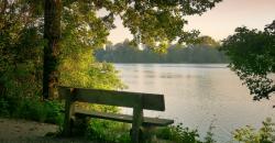 Stressmanagement: So bewältigen Sie Ihren Arbeitsalltag entspannter