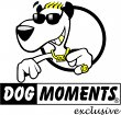 dogmoments