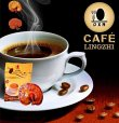 ganoderma4you