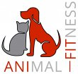 animal-fitness-anifit-tiernahrung